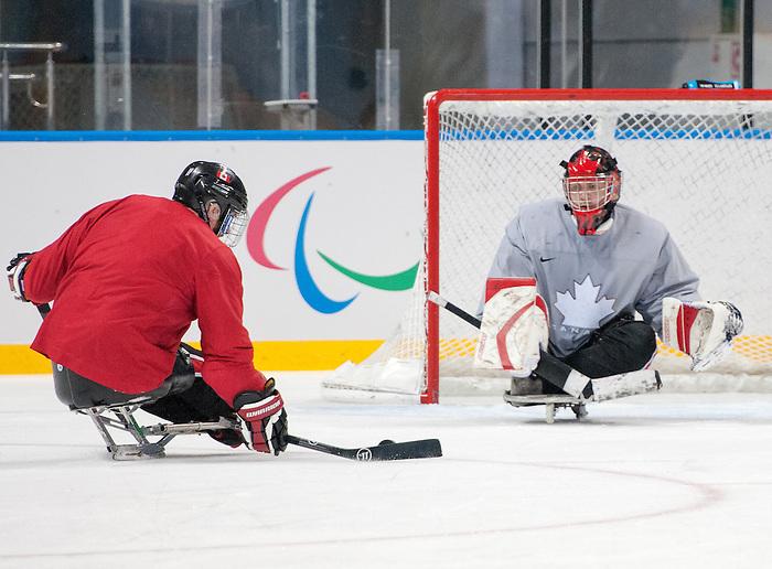 Billy Bridges and Benoit St-Amand, Sochi 2014 - Para Ice Hockey // Para-hockey sur glace.<br /> Canada's Para Ice Hockey team practices before the games begin // L'équipe canadienne de para hockey sur glace s'entraîne avant le début des matchs. 02/03/2014.