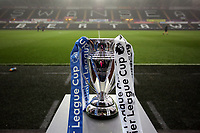 Pictured: The Premier League Cup Monday 15 May 2017<br />Re: Premier League Cup Final, Swansea City FC U23 v Reading U23 at the Liberty Stadium, Wales, UK