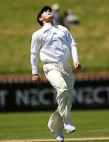 081119 Cricket - Wellington Firebirds v Canterbury Wizards