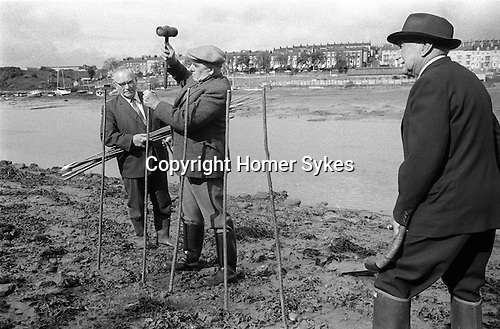 Whitby Penny Hedge. Yorkshire England 1973. Ascension Day. Building the Penny Hedge, probably members of Hutton and Belchamber family. The Horn blower, horn in hand foreground.