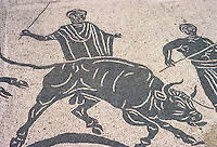 Italy: Ostia--Mosaic: Sacrifice of a bull, in the Augosteum, a building used for the worship of Emperors. Photo '83.