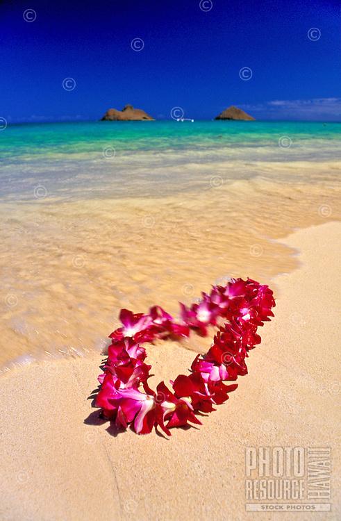 A beautiful orchid lei gently settles on the warm sands of Lanikai beach, Oahu. Mokulua islands in background.