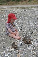 Kinder haben eine freilebende Landschildkröte in Griechenland gefunden und betrachten diese interessiert, Testudo spec., land tortoise