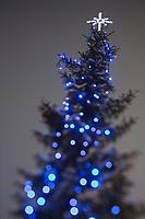 Europe/Finlande/Laponie/Levi: Détail décoration de Noël