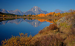 Wyoming, Teton National Park. Mount Moran and the Teton Mountain Range with  reflected in the South Fork of the Snake River in autumn.