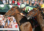 October 25, 2014:  Pick of the Litter and jockey Corey Lanerie win the 57th running of The Hagyard Fayette, Grade 2 $200,000 for owner Crossed Sabres Farm and trainer Dale Romans at Keeneland Racecourse.  Candice Chavez/ESW/CSM