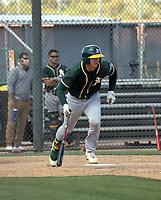 Tyler Soderstrom - Oakland Athletics 2021 spring training (Bill Mitchell)