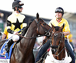 King Congie, Robby Albarado up,  takes part in the post parade before the136th running of the Preakness Stakes at Pimlico Race Course, May 21, 2011. (Joan Fairman Kanes/Eclipsesportswire)