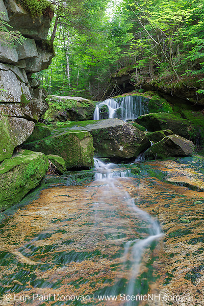 Cascade on Spur Brook, at Coldspur Ledges, in Randolph, New Hampshire during the summer months. This small cascade is located at the confluence of Cold Brook and Spur Brook.