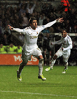 Saturday, 03 November 2012<br /> Pictured: Pablo Hernandez of Swansea celebrating his equaliser against Chelsea<br /> Re: Barclays Premier League, Swansea City FC v Chelsea at the Liberty Stadium, south Wales.