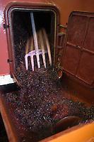 Europe/France/Rhône-Alpes/69/Rhône/Bagnols: Chez Daniel Carron Viticulteur AOC Beaujolais lors des vendanges pressoir à vis