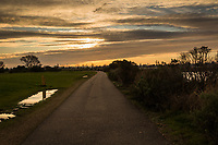 A golden sky over a path at the Martin Luther King Jr. Regional Shoreline on Martin Luther King Day 2020.