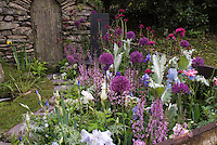 Lavender, pink, blue, purple themed color perennial garden border