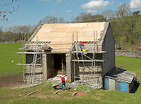 Repairing the roof on a stone barn at Kirkby Stephen.