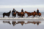 August 14, 2021, Deauville (France) - Horses from the Barrière Deauville Polo Cup relaxing after training at the beach in Deauville. [Copyright (c) Sandra Scherning/Eclipse Sportswire)]