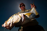 A caucasian fisherman in his 30s is holding a nice specimen of white trevally, a worldwide tropical and subtropical reef fish