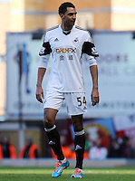 Pictured: David N'Gog of Swansea making his debut. 01 February 2014<br />