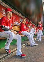 28 May 2016: Washington Nationals outfielder Bryce Harper sits in the dugout prior to a game against the St. Louis Cardinals at Nationals Park in Washington, DC. The Cardinals defeated the Nationals 9-4 to take a 2-games to 1 lead in their 4-game series. Mandatory Credit: Ed Wolfstein Photo *** RAW (ARW) Image File Available ***