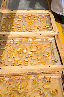 Sliced Cashew Apples Drying in the Sun, The Gambia.  They will be packaged and sold locally.  The fresh apples do not transport well.
