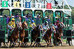 SARATOGA SPRINGS - AUGUST 27: The field exits the starting gate at the start of the Personal Ensign Stakes on Travers Stakes Day at Saratoga Race Course on August 27, 2016 in Saratoga Springs, New York. Cavorting #5, ridden by Javier Castellano, won the race. (Photo by Sue Kawczynski/Eclipse Sportswire/Getty Images)