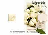 Alfredo, WEDDING, photos, BRTOLP8791,#w# Hochzeit, boda