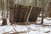 Poor leave no trace habits - Poor camping ethics in the Pemigewasset Wilderness of the White Mountains, New Hampshire. Trees were cut to build this make shift lean to.