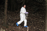 NO BYLINE PLEASE<br /> Pictured: A scenes of crimes officer searching for evidence in the woods where the body of Rebecca Aylward was discovered. Monday 25 October 2010<br /> Re: 15 year old Rebecca Aylward has been found murdered in woodlands near Aberkenfig south Wales. Two fifteen year old men have been arrested. Aylward was originally from nearby Maesteg.