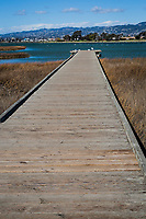 The bird observation platform at MLK Regional Shoreline extends well into the wetland and San Leandro Bay while the Oakland Hills rise in the distant background.
