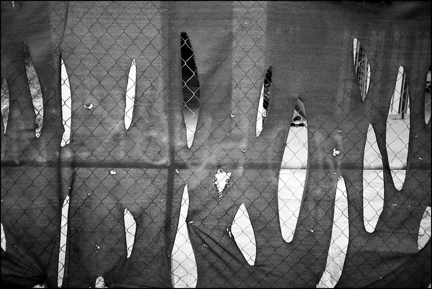 "The Fence<br /> From ""Miami in Black and White"" series. North Miami Beach, 2009"