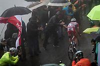Mattia Cattaneo (ITA/Androni Giocattoli-Sidermec) up the extremely wet, cold & misty Cole di Mortirolo <br /> <br /> Stage 16: Lovere to Ponte di Legno (194km)<br /> 102nd Giro d'Italia 2019<br /> <br /> ©kramon