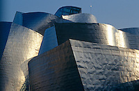 The titanium panelled organic contours of Frank Gehry's Guggenheim Museum in Bilbao resemble the prows of ships