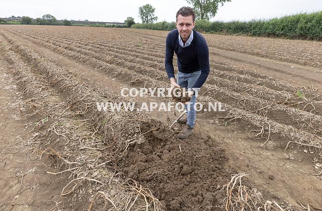 Boxmeer, 160821<br /> Boer Daan Janssen en zijn veld vol verrotte frietaardappelen. Hij krijgt geen vergoeding voor de overstromingen omdat hij aan de verkeerde kant van de Maas zit. In totaal heeft hij 75 HA weidegrond met verschillende gewassen die kapot zijn gegaan door het water.<br /> Foto: Sjef Prins - APA Foto