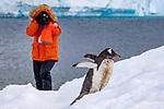 1248 Antarctica