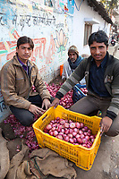 India, Dehradun.  Young Men Selling Onions on the Street.