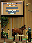 LEXINGTON, KY - September 13: Hip # 379 War Front - Haka Colt consigned by Claiborne Farm sold for $575,000 at the September Yearling sale at Keeneland.  September 13, 2016 in Lexington, KY (Photo by Candice Chavez/Eclipse Sportswire/Getty Images)