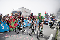 Peter Sagan (SVK/Bora-Hansgrohe) with fellow Monagascans Luke Rowe (GBR/Ineos) & Michal Kwiatkowski (POL/Ineos) up the Tourmalet (HC/2115m/19km @7.4%)<br /> <br /> Stage 14: Tarbes to Tourmalet(117km)<br /> 106th Tour de France 2019 (2.UWT)<br /> <br /> ©kramon