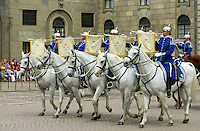 Soldiers from Livgardet, the royal guard, during a parade outside Stockholm Castle.