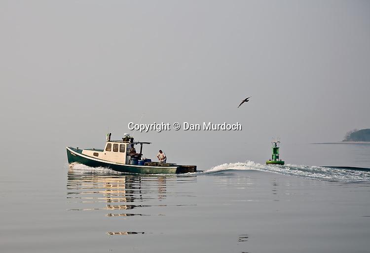 Lobster boat on a still morning