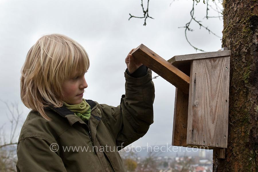 Nistkasten, Kind kontrolliert einen Vogel-Nistkasten für Halbhöhlenbrüter