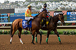 """DEL MAR, CA  JULY 28: #3 Secret Spice, ridden by Flavien Prat, in the post parade before the Clement L Hirsch Stakes (Grade 1) a Breeders' Cup """"Win and You're In"""" Distaff Division (Photo by Casey Phillips/Eclipse Sportswire/CSM)"""