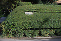 "11/09/16<br /> <br /> A hedge in Nottinghamshire has been crafted into a one third scale replica model of the Mallard. The living masterpiece clipped into a privet hedge is 7ft tall and 42 ft long. <br /> <br /> ""The shape of the hedge just lent itself to being cut into a train"" said 72 year old Brian Childs, a retired AA controller and steam enthusiast who has taken the last three years perfecting his topiary creation alongside his bungalow in Morkinshire Lane, Cotgrave.<br /> <br /> ""Mallard broke the world steam record only 20 minutes from here in 1938 so that was the obvious choice.<br /> <br /> ""I have dodgy knees and cannot climb ladders so I didn't want it to be too high - I'm 6'4"" and can just reach the top of the train.<br /> <br /> ""I trim it for a couple of hours every other day from Spring to Autumn. The front still needs to 'grow' a bit more so I can add one more wheel.<br /> <br /> ""I've even included a footplate so a young lad from across the road can pretend he's the train driver. He thinks my blue shed is the ticket office.<br /> <br /> <br /> All Rights Reserved, F Stop Press Ltd. +44 (0)1773 550665"