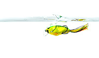 Image of a Supernato lure by Molix, a soft-hard crankbait