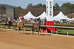 March 6, 2021: Bode's Maker (8) with jockey Ramon A Vazquez crossing the finish line in the fifth race at Oaklawn Racing Casino Resort in Hot Springs, Arkansas on March 6, 2021. Justin Manning/Eclipse Sportswire/CSM