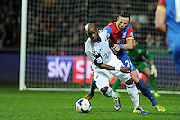 Swansea city's Leroy Lita holds off Damien Delaney of Palace. Barclays Premier league, Swansea city v Crystal Palace match at the Liberty Stadium in Swansea, South Wales on Sunday 2nd March 2014.