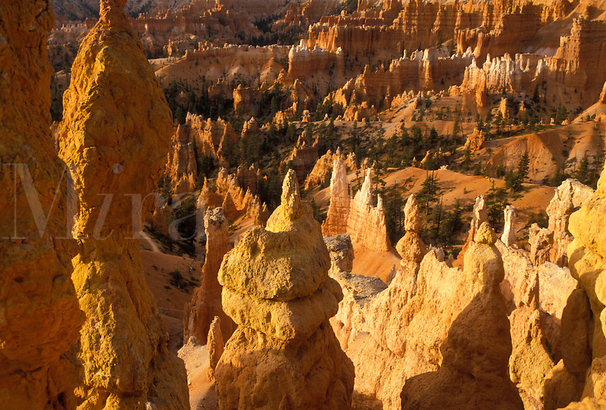 """AJ3838, Bryce Canyon, Bryce Canyon National Park, Paunsaugunt Plateau, Utah, Colorful rock formations and pillars called """"""""hoodoos"""""""" rise in jagged towers throughout Bryce Canyon Nat'l Park in the state of Utah."""