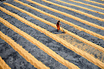 Workers play and work as they drive rice in mesmerising patterns by Avishek Das