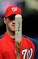 16 May 2012: Washington Nationals outfielder Bryce Harper looks at his bat prior to facing the Pittsburgh Pirates at Nationals Park in Washington, DC. The Nationals defeated the Pirates 7-4 in the first game of their 2-game series. Mandatory Credit: Ed Wolfstein Photo