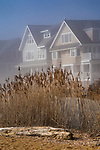 West Warf, Madison, CT. Middle Beach area. Shoreline homes in fog.