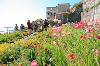 Gardens of Alcatraz, Garden Conservancy Tour