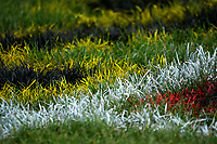 210605 Swindale Shield Rugby - Paremata-Plimmerton v Petone